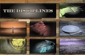 TheDisciplines